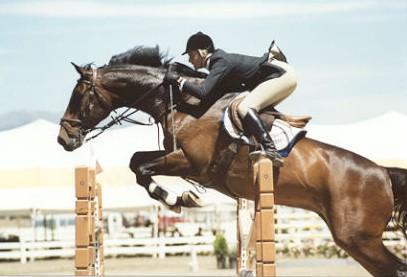 Horses Jenni Martin Wins 15 000 Open Jumper Prix With